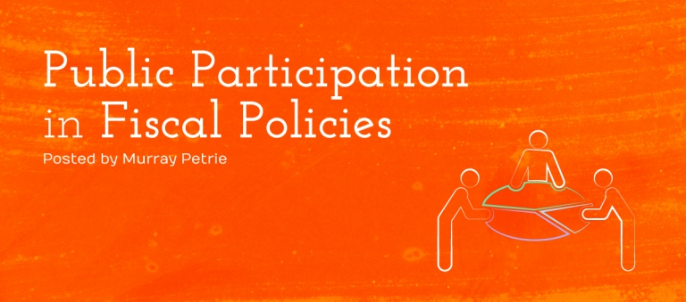What is public participation in fiscal policy and why is it important?