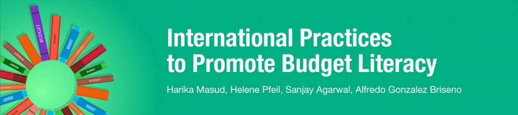 The 2017 Open Budget Survey: What the results for public participation mean