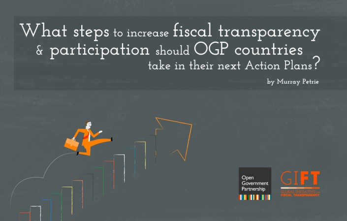 What steps to increase fiscal transparency and participation should OGP countries take in their next Action Plans?